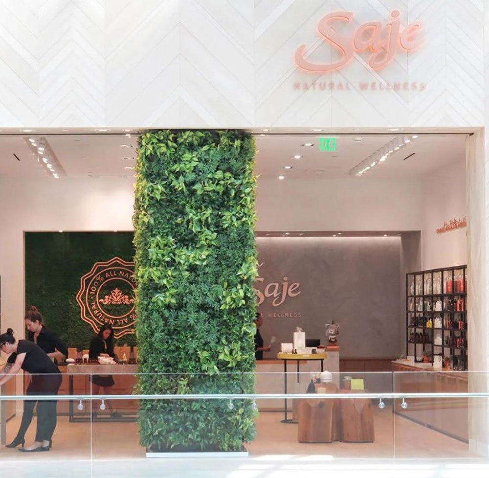 Walls made of plants in office workspaces are striking in design, and make employees feel more connected to nature. They also make impressive impressions on guests & visitors.